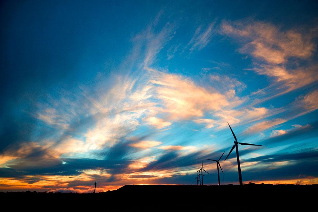 Renewable Energy Dominates Portuguese Electricity Consumption